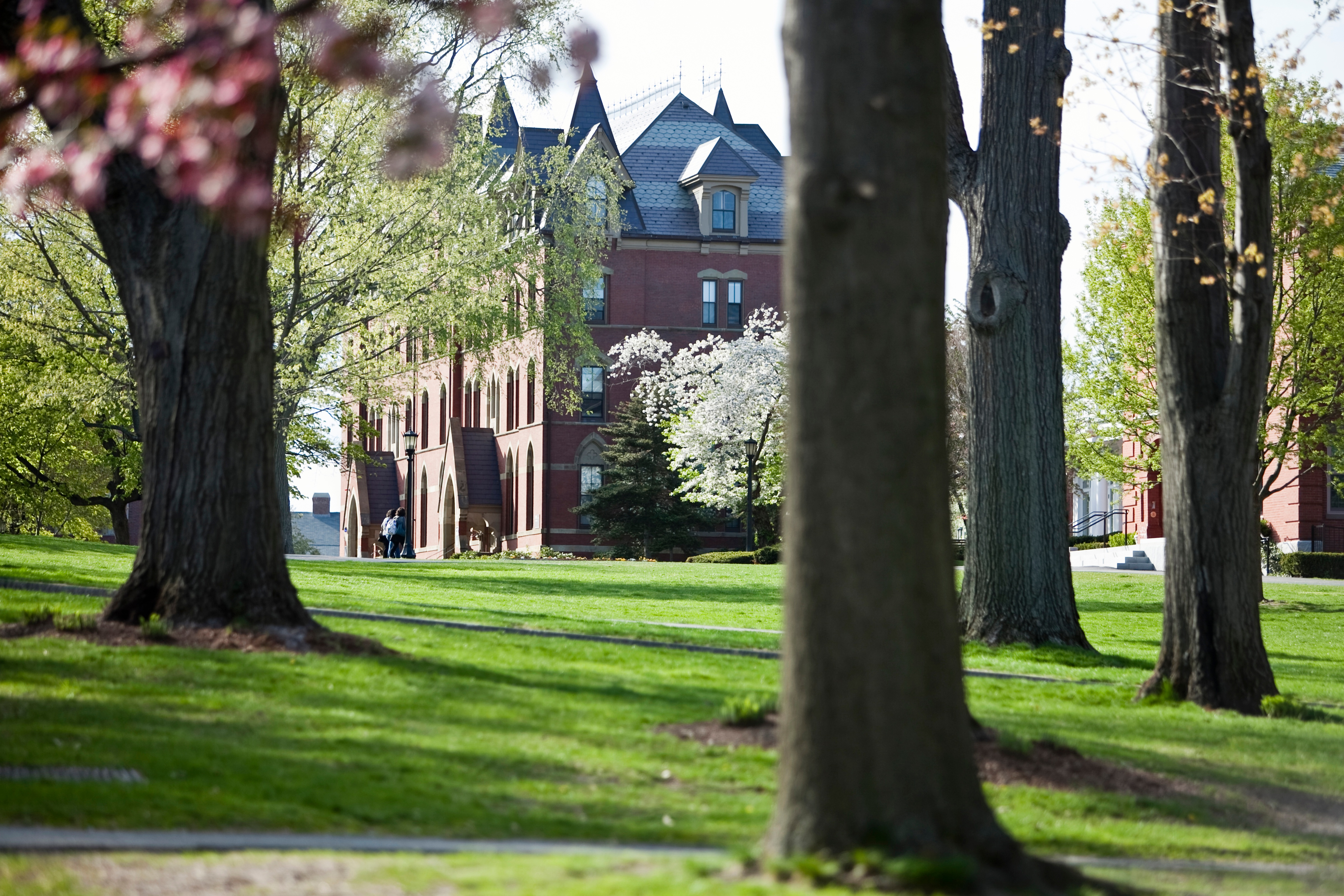 West-Hall-Through-Trees-Tufts-University-1.jpg